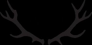 WYLD Logo
